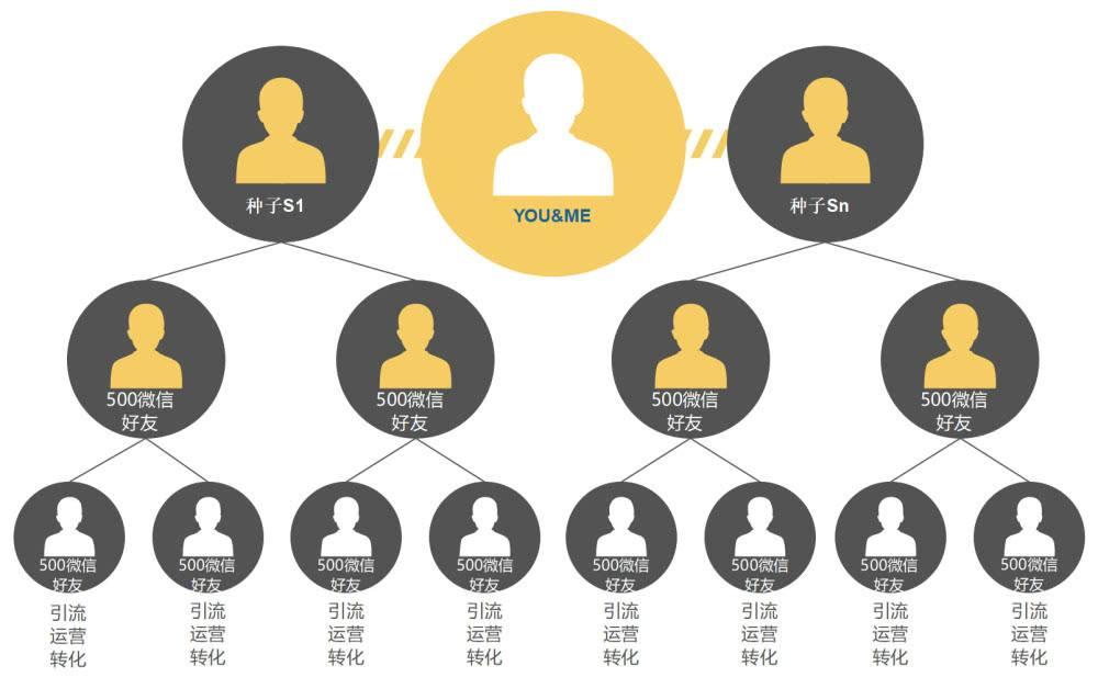2019社交电商模式分析,社交电商app软件制作,软件亚博官网首页公司哪个好